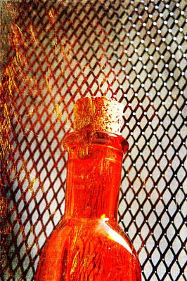 Photograph - Potion Or Poison? by Randi Grace Nilsberg