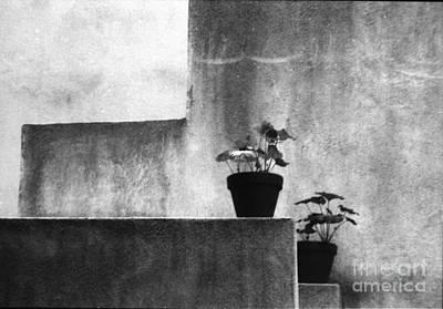 Art Print featuring the photograph Pots by Steven Macanka