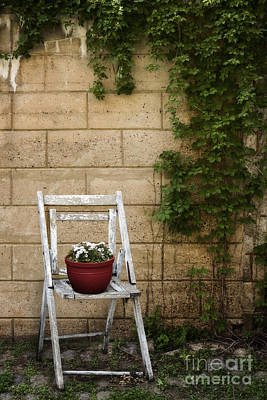Folding Chair Photograph - Potted Flowers by Margie Hurwich