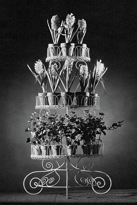 Photograph - Potted Flowers On A Wrought Iron Stand by The 3
