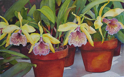 Art Print featuring the painting Potted Orchids by Judy Mercer
