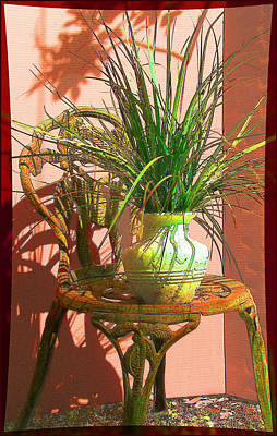 Photograph - Potted Plant In Chair No 3 by Ginny Schmidt