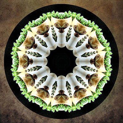 Art Print featuring the photograph Potted Plant Kaleidoscope by Betty Denise