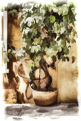 Digital Art - Potted Plant by Maria Coulson