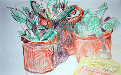 Painting - Potted Plants And Novel by Anita Dale Livaditis