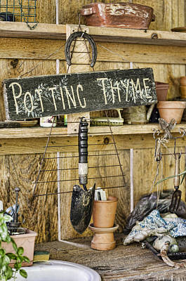 Photograph - Potting Thyme by Heather Applegate