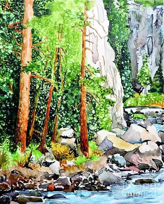 Poudre Canyon Beauty Art Print by Tom Riggs