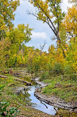 Fort Collins Photograph - Poudre Walk-2 by Baywest Imaging