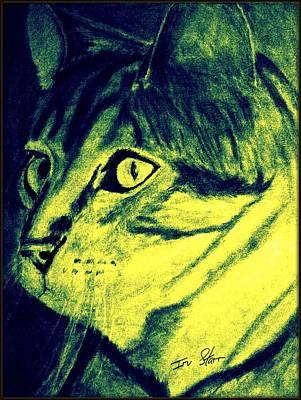 Pound Cat Tinted Art Print