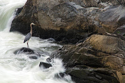Waterfall Photograph - Pounding On The Rocks by Benjamin DeHaven