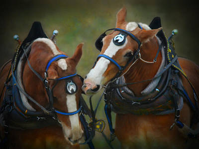 Draft Horses Digital Art - Power And Grace by Posey Clements