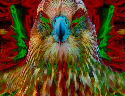 Digital Art - Power Hawk 1 by Colleen Cannon