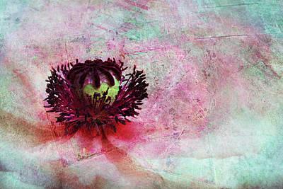 Power Of Poppy Art Print by Claudia Moeckel