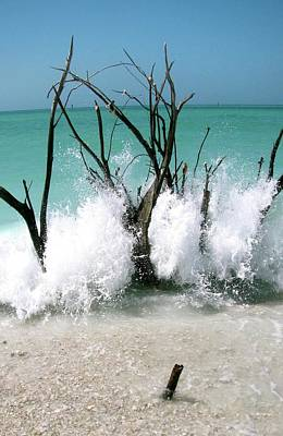 Sarasota Artist Photograph - Power Wave  by AR Annahita