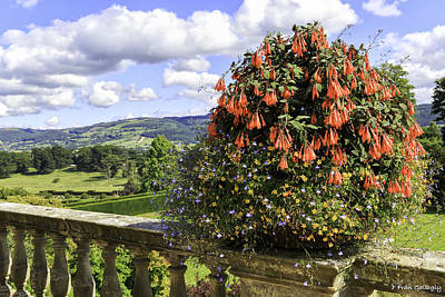 Photograph - Powis Castle Terrace by Fran Gallogly