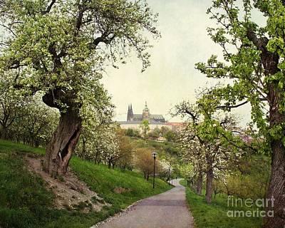 Prague In Bloom I Art Print