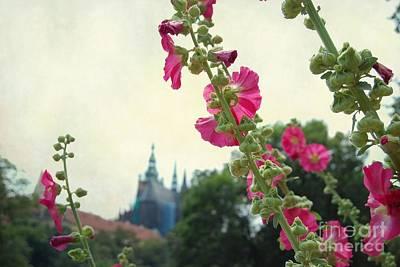Prague In Bloom V Art Print