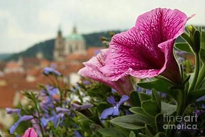 Prague In Bloom Vi - Summer Edition Art Print