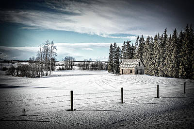 Photograph - Praire Life In Alberta by Roxy Hurtubise