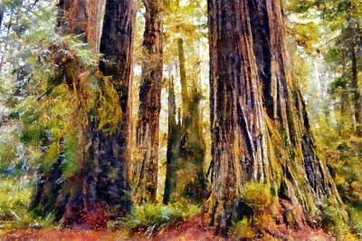Digital Art - Prairie Creek Redwoods by Kaylee Mason