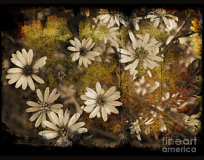 Photograph - Prairie Flowers by Jim Wright