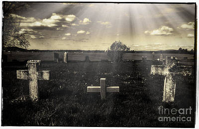 Photograph - Prairie Graves by Jean OKeeffe Macro Abundance Art