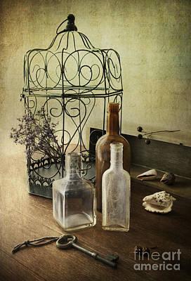 Treasure Box Photograph - Prairie Home Treasures by Elena Nosyreva