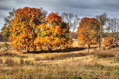 Photograph - Prairie Late Fall II by Roger Passman