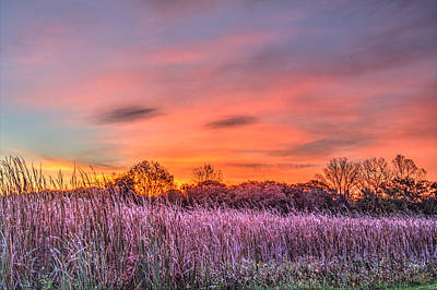 Photograph - Moraine Hills State Park Moments Before Sunrise by Roger Passman