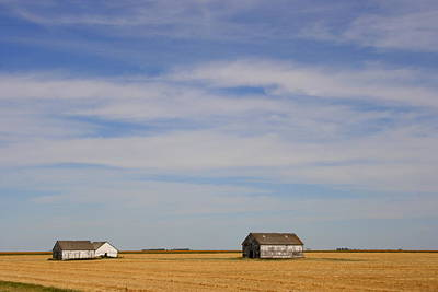 Photograph - Prairie Sky by Betty-Anne McDonald