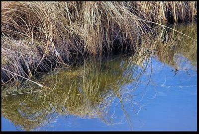 Prairie Stream Art Print