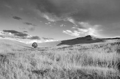 Photograph - Prairie Tales On The Road To Glacier Np Bw by Rich Franco