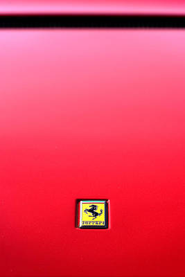Photograph - Prancing Horse by Peter Tellone