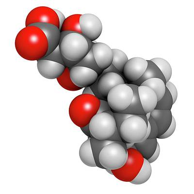Digitally Generated Image Photograph - Pravastatin Cholesterol Lowering Drug by Molekuul