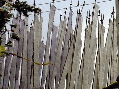 Photograph - Prayer Flags by Patrick Morgan