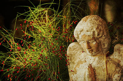 Seraph Photograph - Praying For Peace by Terry Rowe