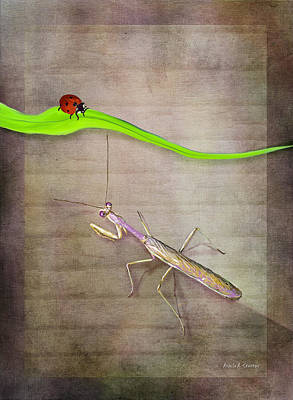 Children Stories Digital Art Painting - Praying Mantis And Ladybug by Angela A Stanton