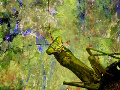 Digital Art - Praying Mantis Praying For Me by J Larry Walker