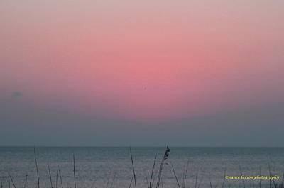 Photograph - Pre-dawn by Nance Larson