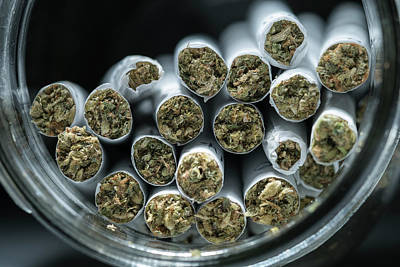 Indoor Photograph - Pre-rolled Medical Cannabis Joints by Stock Pot Images