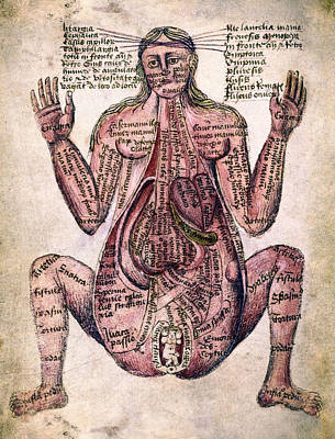 Autopsy Digital Art - Pregnant Woman Medical Illustration C. 14th Century by Daniel Hagerman