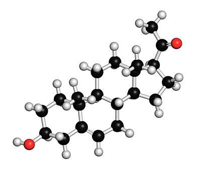 Pregnenolone Hormone Molecule Art Print