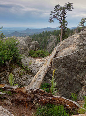 Photograph - Black Hills Vista by Heidi Hermes