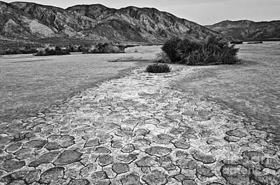 Dry Lake Photograph - Prehistoric - Clark Dry Lake Located In Anza Borrego Desert State Park In California. by Jamie Pham