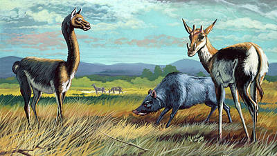 Prehistoric Mammals Art Print by Deagostini/uig