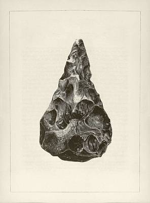 Anthropological Photograph - Prehistoric Stone Tool by Middle Temple Library