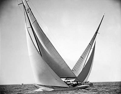 Wind Photograph - Prelude And Yucca In Regatta by Underwood Archives