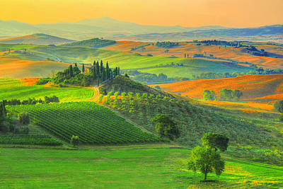 Vineyards Photograph - Prelude To Summer by Midori Chan