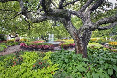 Prescott Photograph - Prescott Garden by Eric Gendron
