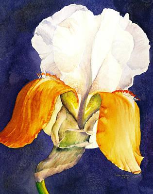 Prescott Iris 2 Original by Melanie Harman